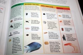 fish_inforgraphic_trumps_america_layout